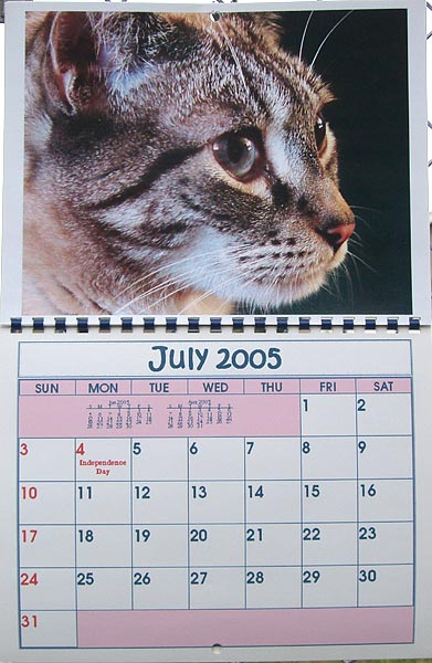 BMK Designs Calendar (My furkid KC)